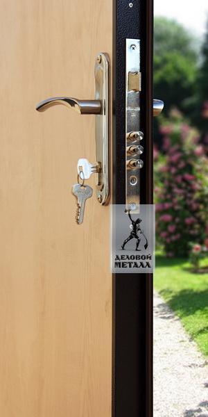 Фото металлической входной двери производства ООО Деловой металл ДМС-100