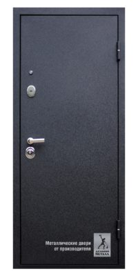 Дверь входная в квартиру ДМГ-209