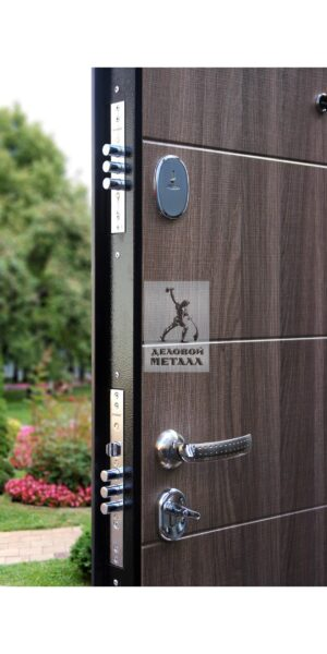 Металлическая дверь с замками Border