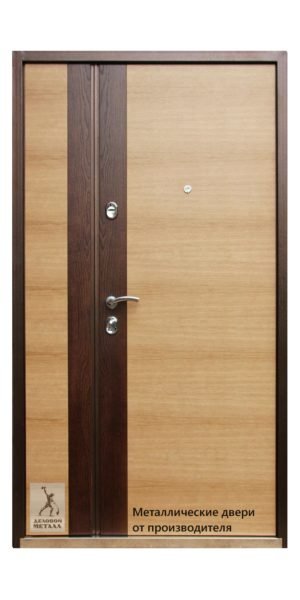Внутренняя сторона двери в квартиру ДМС-805